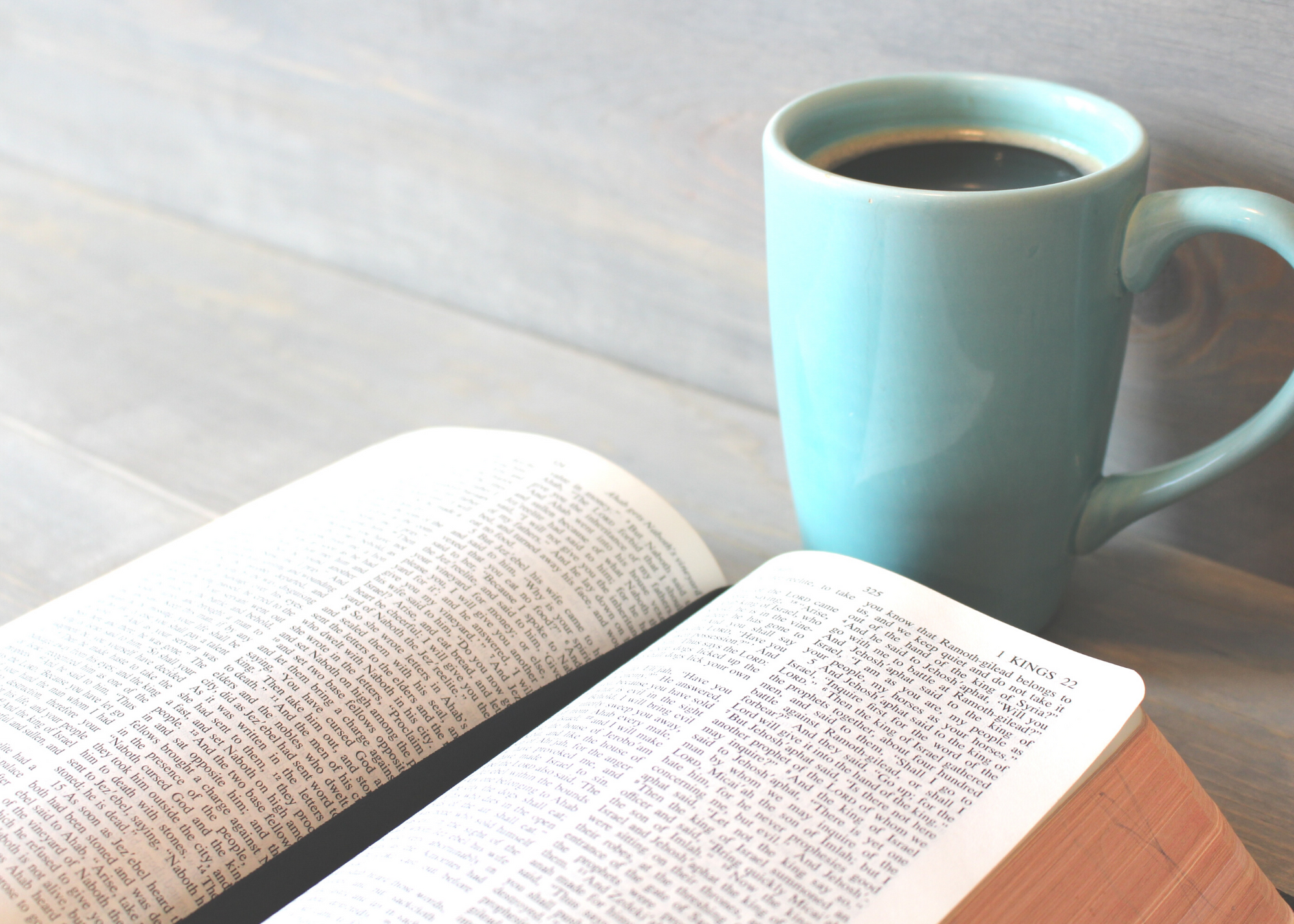 Which Bible translation is best to read in recovery?